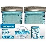 Mason Jars - 250 mL - Fruit - Blue