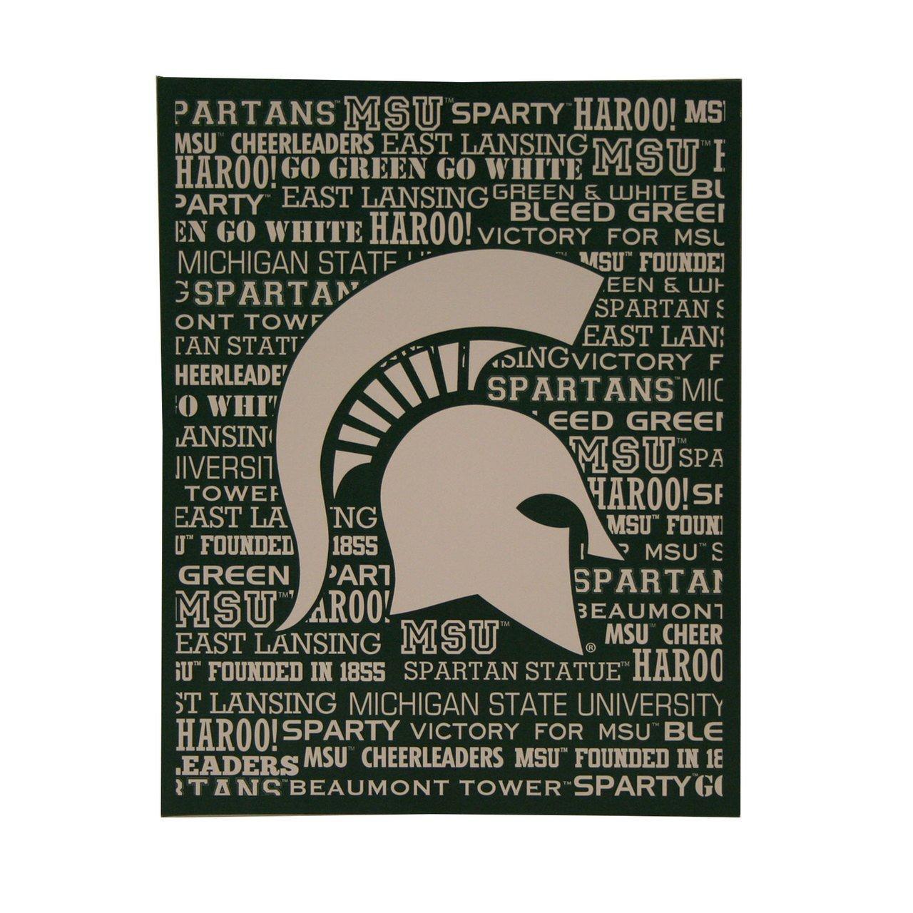 NCAA Michigan State Spartans 13x13 Canvas Print Artissimo