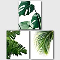 Monstera, Banana, Palm Leaves, Set Of 3 Tropical Prints, 8 x 10 Inches, Unframed