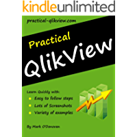 Practical QlikView (English Edition)
