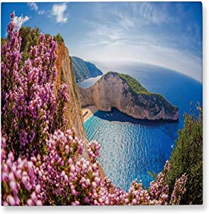 Pummelouty Navagio Beach with Shipwreck and Flowers Against Sunset,Bedroom Wall Decor Zakynthos Island Canvas Wall Art for Living Room 8x8