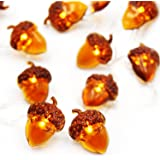 CPPSLEE Decorative Acorn String Lights - 40 LED 13.12ft Battery Box Operated Remote Timer Thanksgiving Decorations
