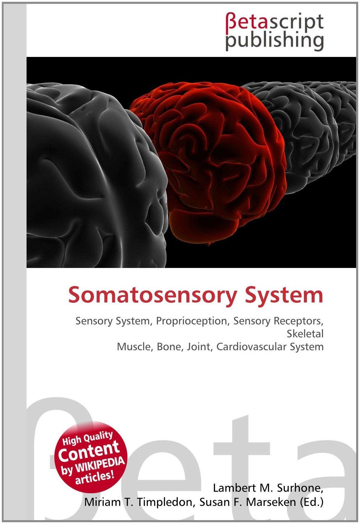 Amazon.fr   Somatosensory System Sensory System, Proprioception ...