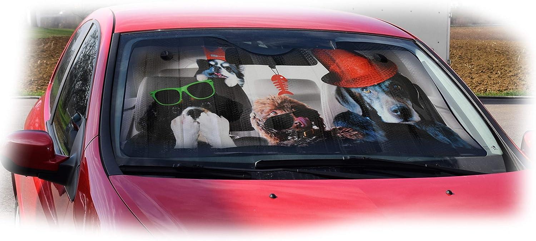 OK Cars AZ-SAA-044 Parasol Delantero 130 x 70 cm con dise/ño de Perro protecci/ón Solar para el Parabrisas