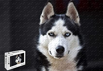 Amazon Com Pigbangbang 34 4 X 22 6 Inch Basswood Husky Dog Blue