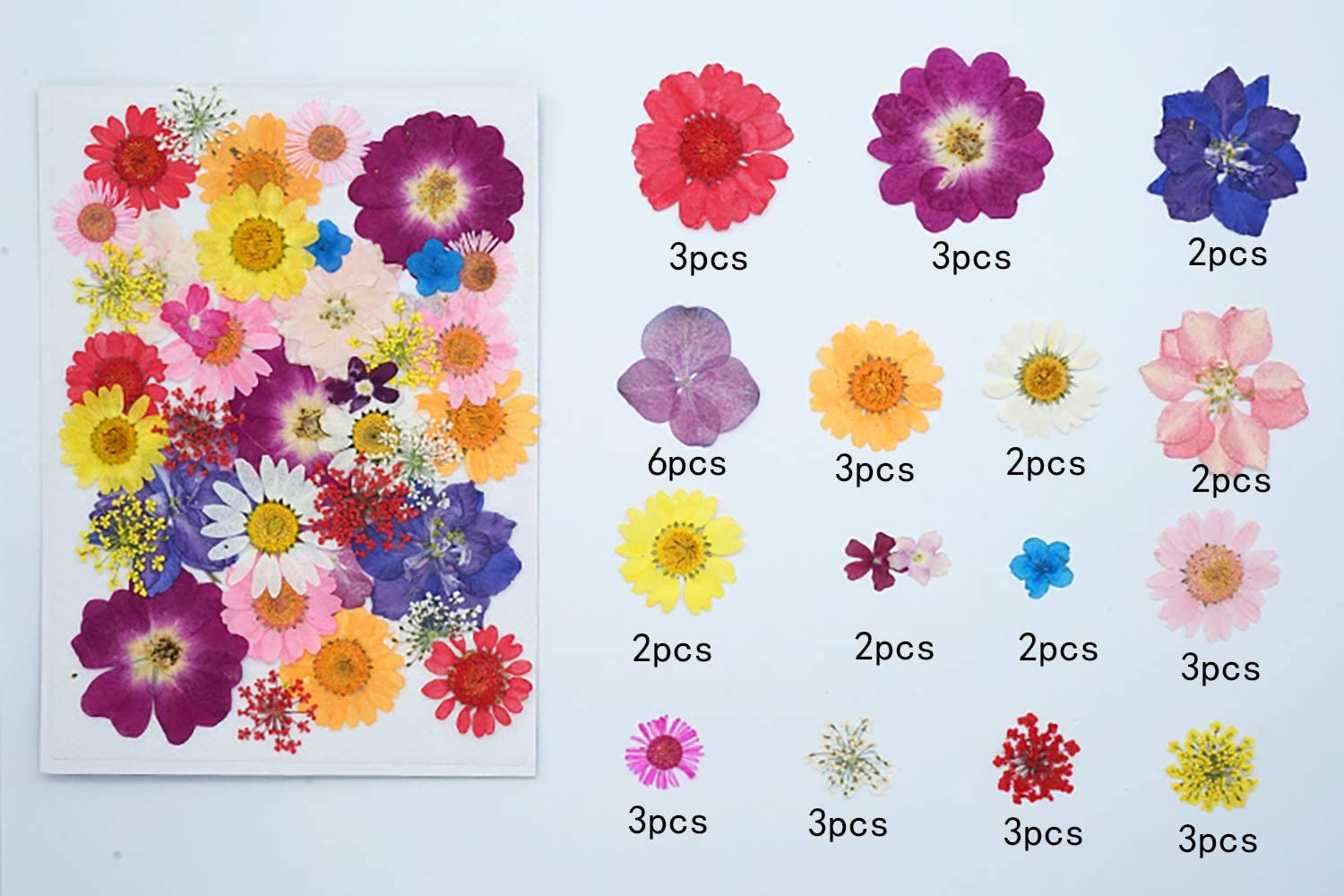 DKAF 4 Packs 96 Pieces Natural Dried Pressed Flowers Leaves with Tweezers Daisy Leaves DIY Accessories Scrapbooking Candle Resin Jewelry Decoration Crafts Making