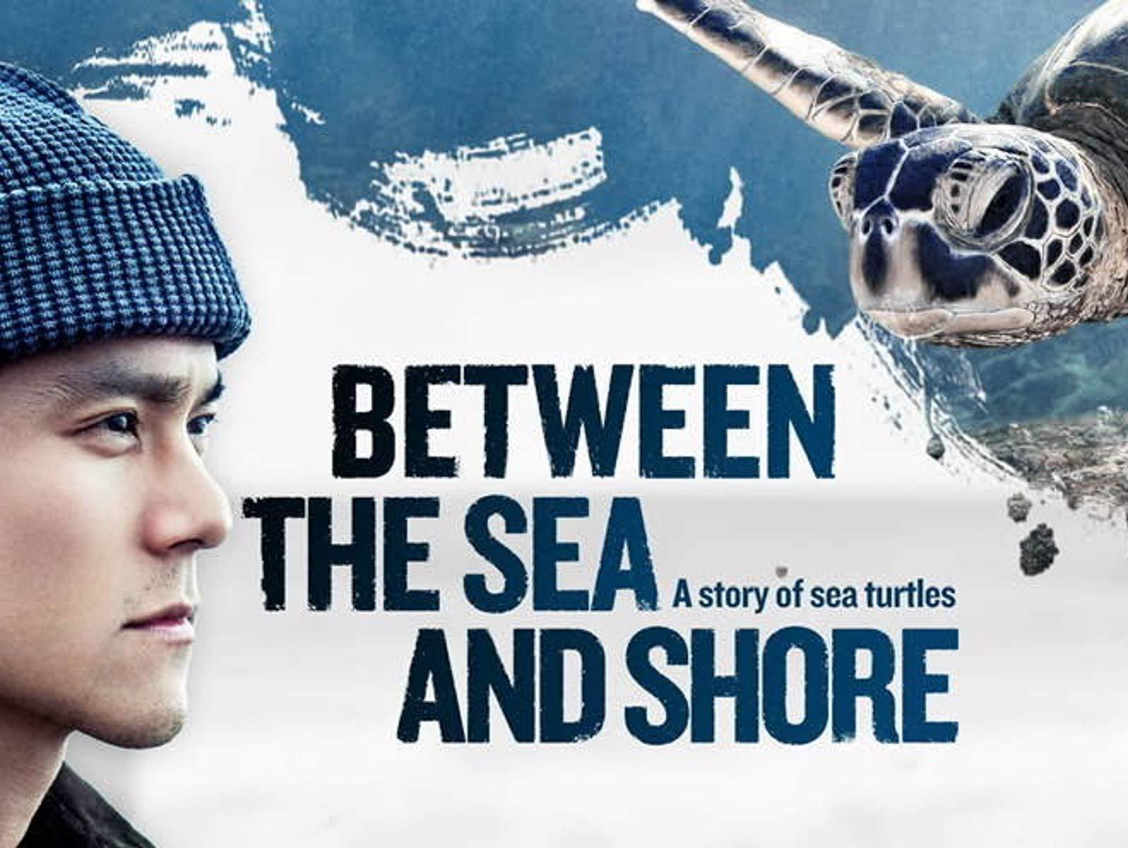 Between the Sea and Shore - Season 1