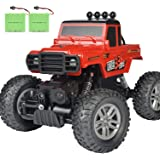 DOUBLE E RC Car for Boys Girls Kids (Black and Red)