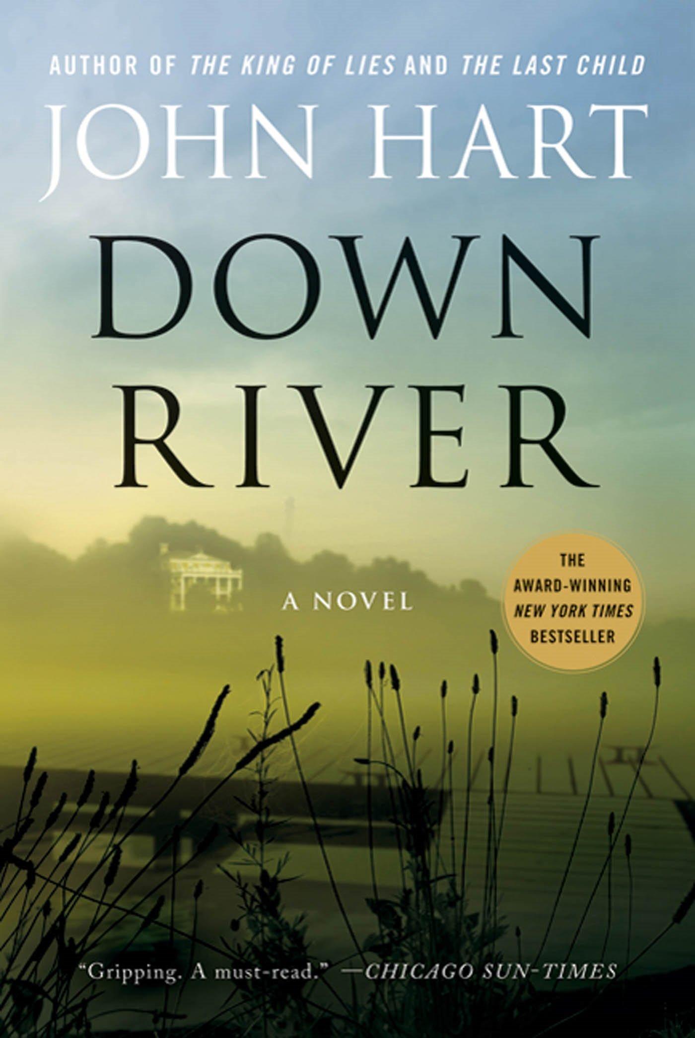 Read Online Down River: A Novel PDF