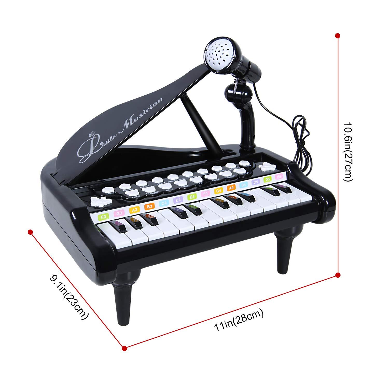 SGILE Juguete para Teclado de Piano con micrófono, 24 Teclas Musical Aprender a Tocar Piano para niños Niñas Niños pequeños Cantando Desarrollo de música, ...