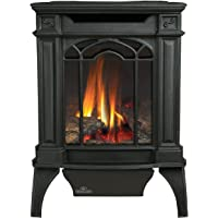 Arlington Direct Vent Cast Iron Gas Stove Color: Black, Fuel Type: Natural Gas