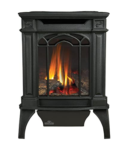 Awesome Arlington Direct Vent Cast Iron Gas Stove Color Black Fuel Type Natural Gas Home Interior And Landscaping Staixmapetitesourisinfo