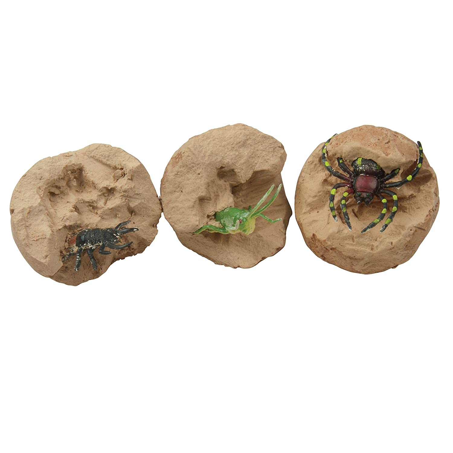 Dig it Up Big Bugs and Minerals Set of 3 Dig Kit Dinosaur Eggs