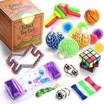 Sensory Fidget Toys Set, 25 Pcs., Stress Relief and Anti-Anxiety Tools