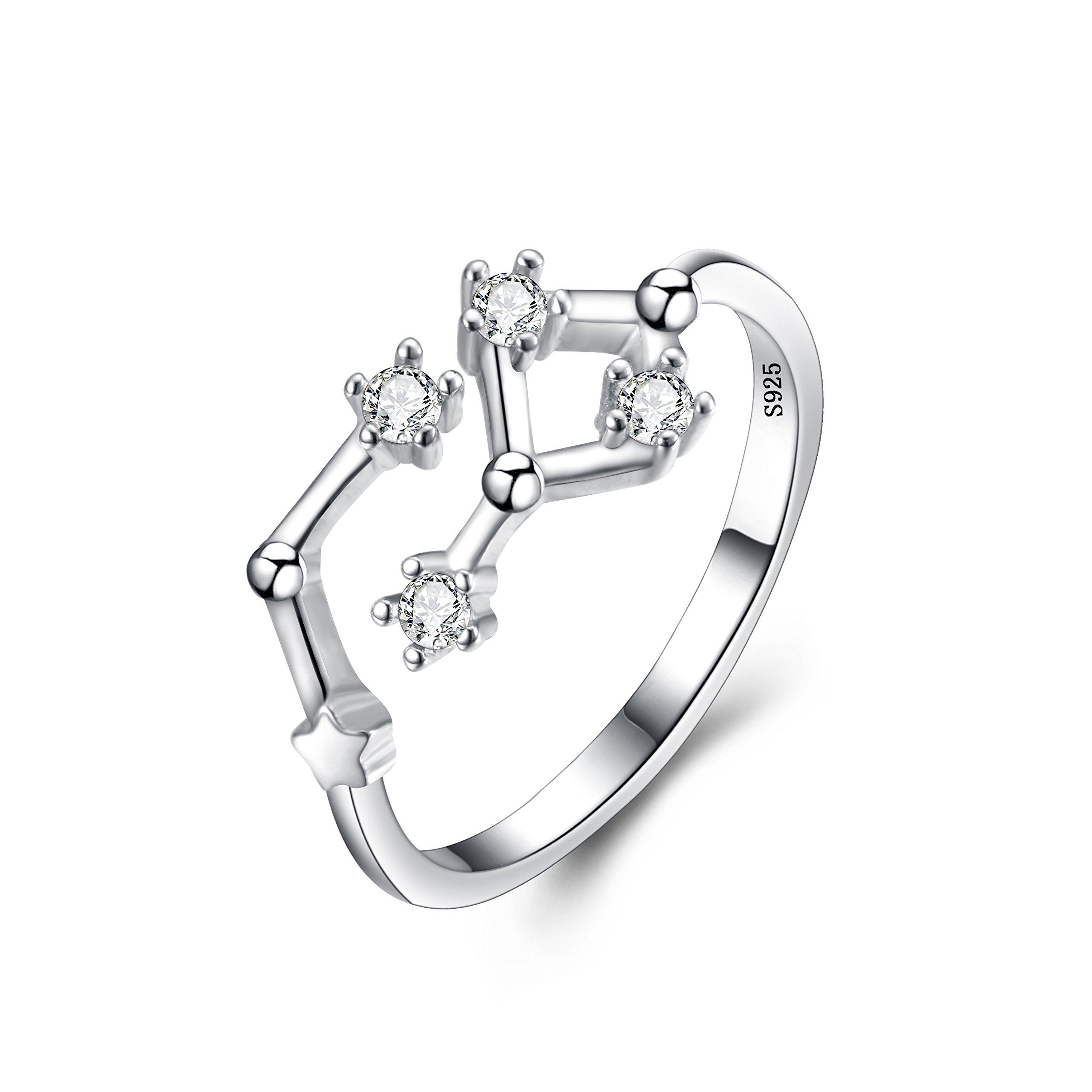 BriLove Women 925 Sterling Silver CZ Statement Ring -''Aquarius'' Horoscope Zodiac 12 Constellation Astrology Adjustable Ring