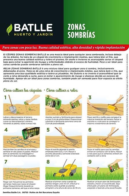 Semillas de Césped - Césped Zonas Sombrías 1Kg - Batlle: Amazon.es: Jardín