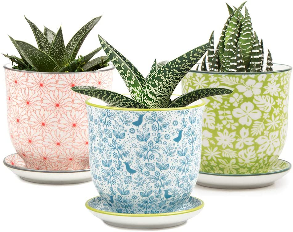 Chive – Set of 3 Liberte, Small Succulent and Cactus Pot and Saucer, 3 Inch Flower and Plant Container with Drainage Hole Saucer, Mini Pot for Indoor Outdoor Garden Decor, Bulk Blue, Red Mix 5