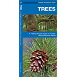 Trees: A Folding Pocket Guide to Familiar North American Plants
