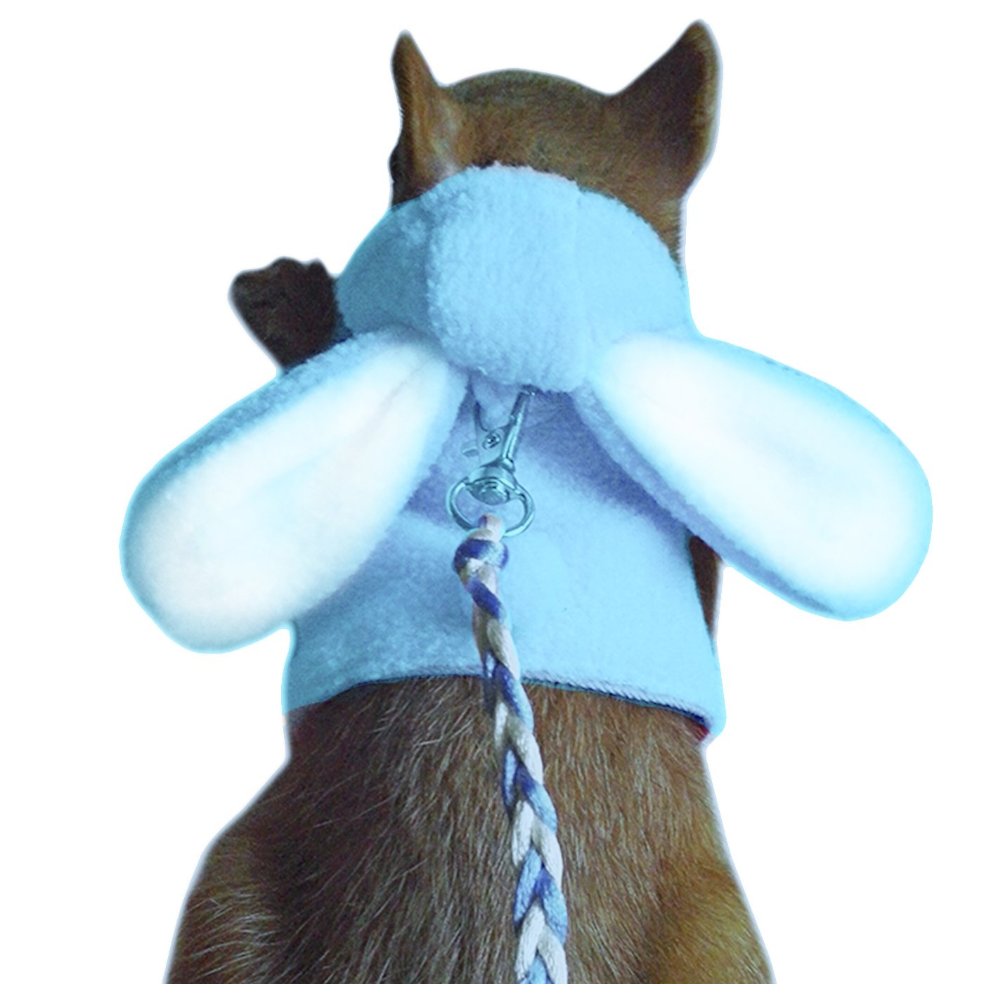 Alfie Pet by Petoga Couture - Fargo Harness and Leash Set for Small Animals like Mouse, Chinchilla, Rat, Gerbil and Dwarf Hamster - Color Blue