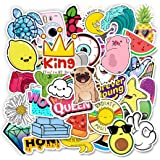 51 Pack Cute Laptop Stickers for Teen Girls Water Bottle Stickers for Guitar Skateboard Suitcase Phone Luggage Car Bike…