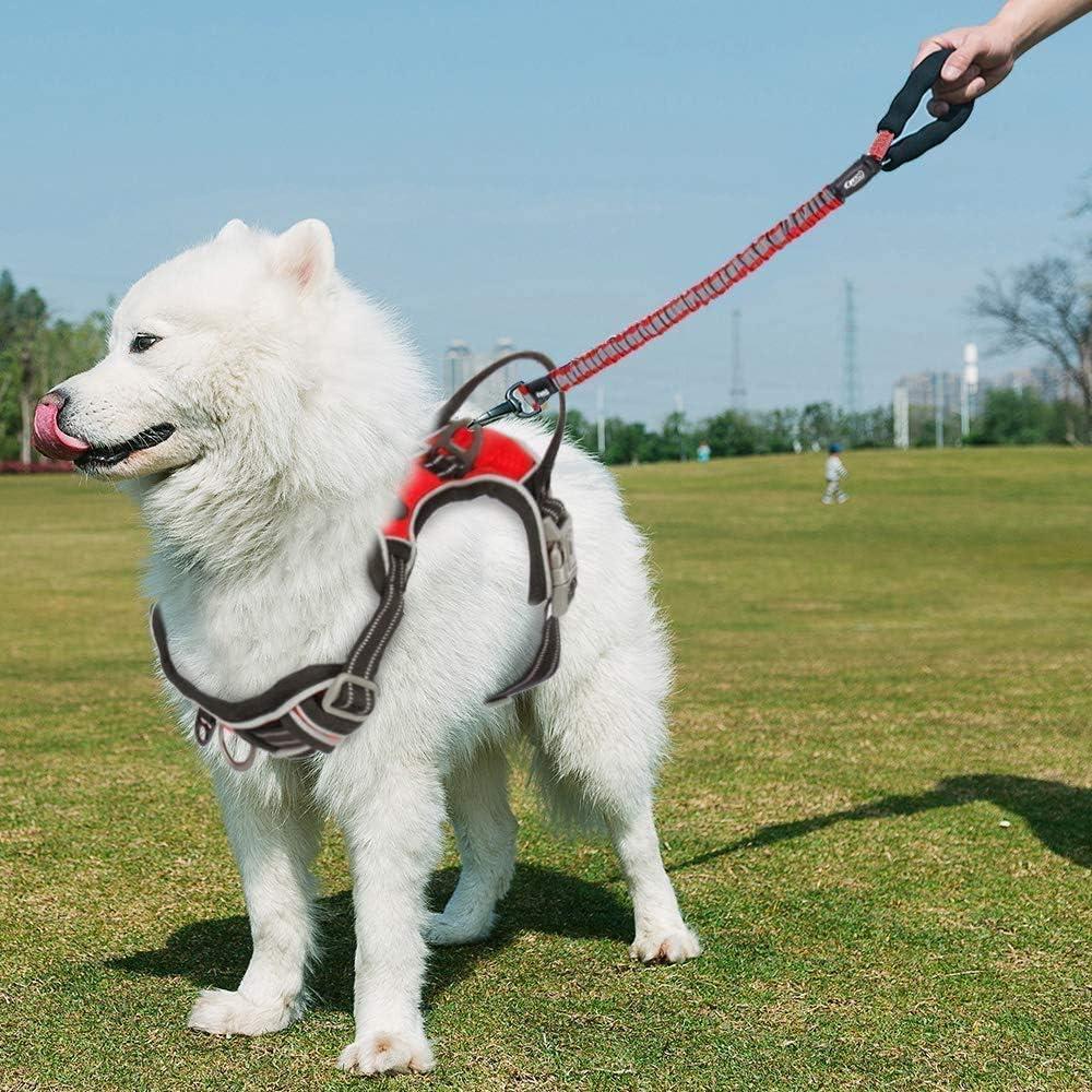PETTOM Arn/és del Perro Ajustable Arn/és Nylon 3M Reflectante