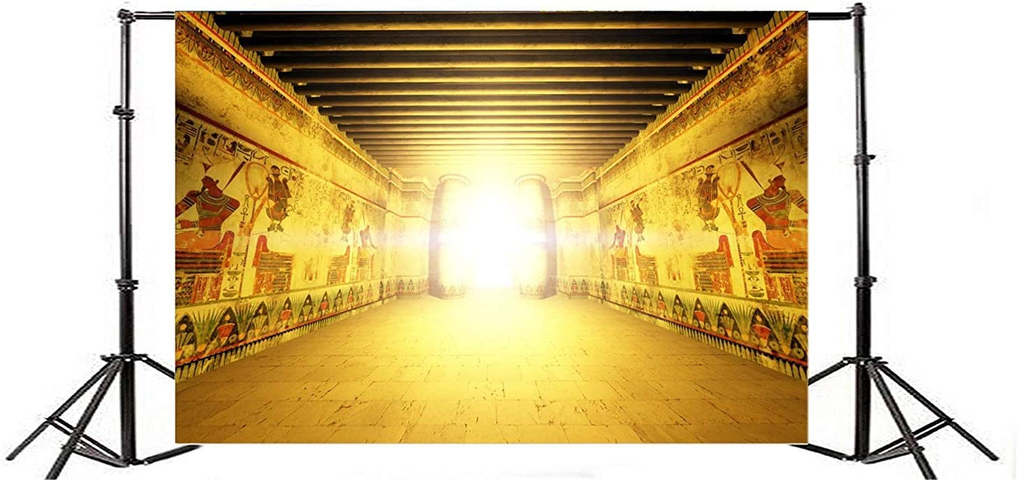 10x6.5ft Dazzling Golden Egyptian Mural Gallery Polyester Photography Background Famous Egypt Scenic Spot Backdrop Child Adult Artistic Portrait Shoot Egypt Party Studio Props