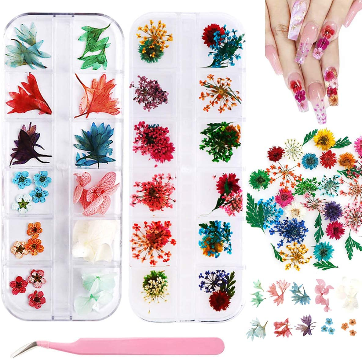 Dried Flowers Nail Art, 2 Boxes Nail Dried Flowers 24 Colors Mini Real Natural Flowers with Tweezers 3D Applique Nail Decoration Sticker for Tips Manicure Decor