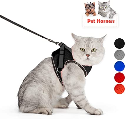 SCIROKKO Escape Proof Cat Harness with Leash Best Soft Walking Vest Jacket Adjustable Mesh Large Best Outdoor fit