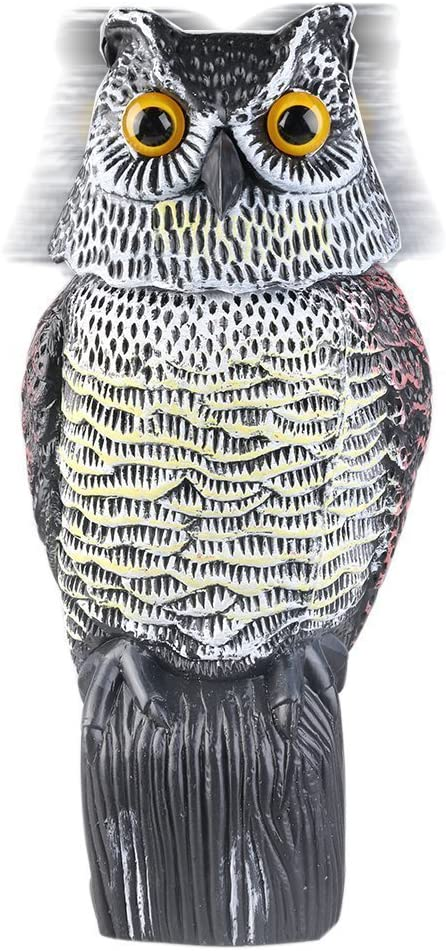 Búho Espantapájaros estatua con cabeza giratoria señuelo de adorno para jardín para protección de espacios exteriores: Amazon.es: Jardín
