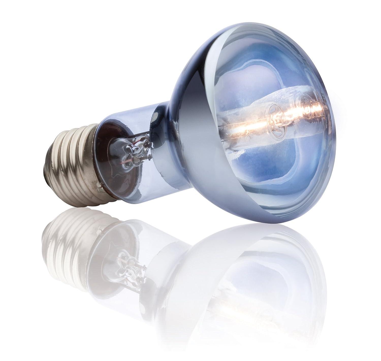 Exo Terra Sun-Glo Daylight Halogen Lamp 35-Watt