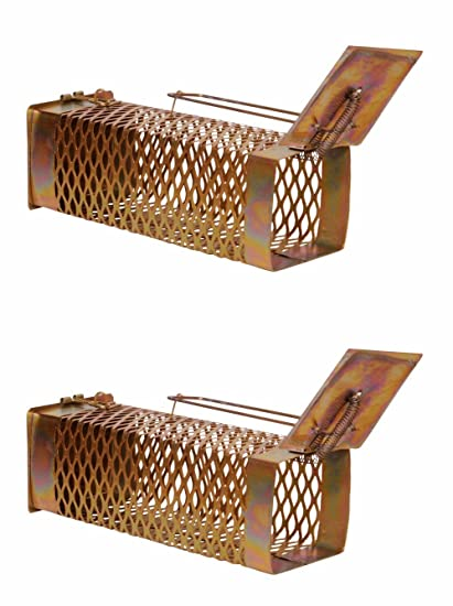 Truvic Iron Rat Trap Cage Set of 2 (D)