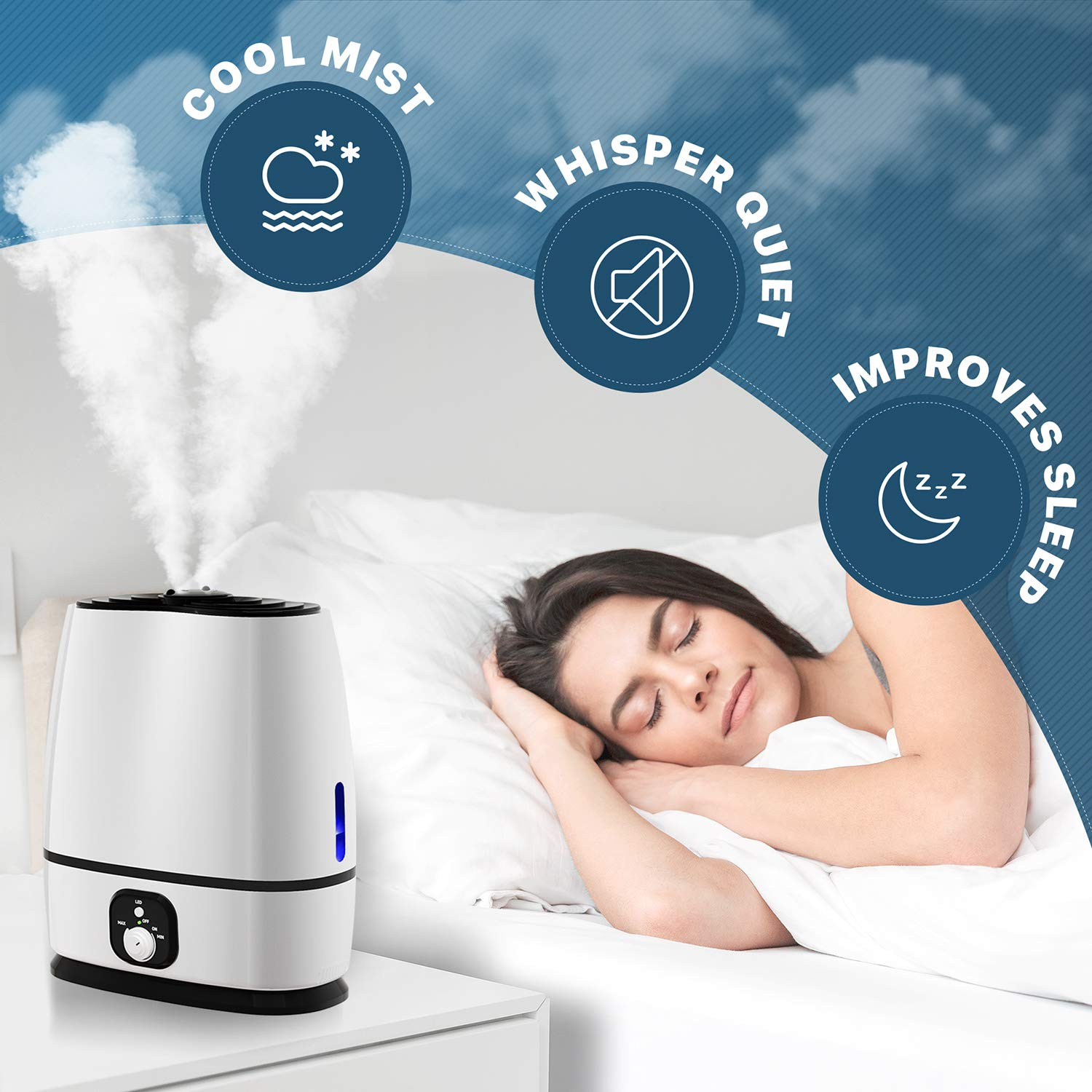 Everlasting Humidifier Review