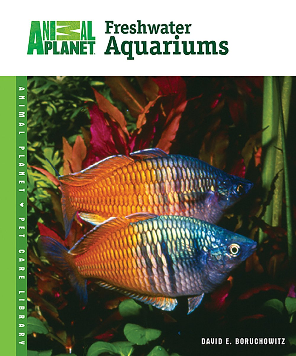 500 freshwater aquarium fish by greg jennings - Freshwater Aquariums Animal Planet Pet Care Library David E Boruchowitz 0018214137603 Amazon Com Books