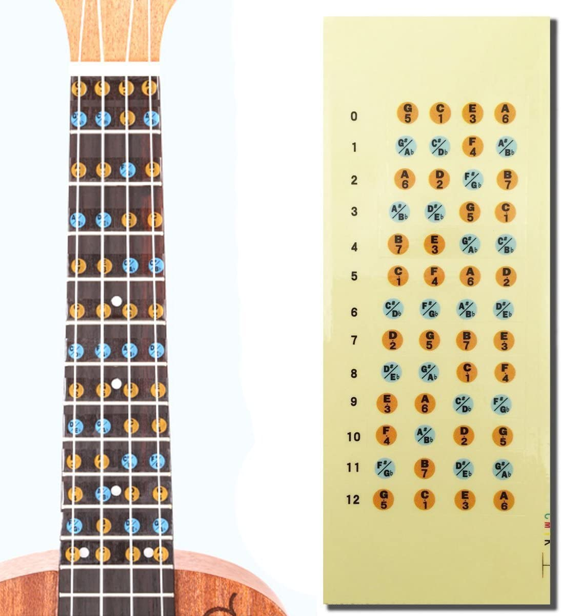 Ukelele Diapasón Nota adhesivos: Amazon.es: Instrumentos musicales