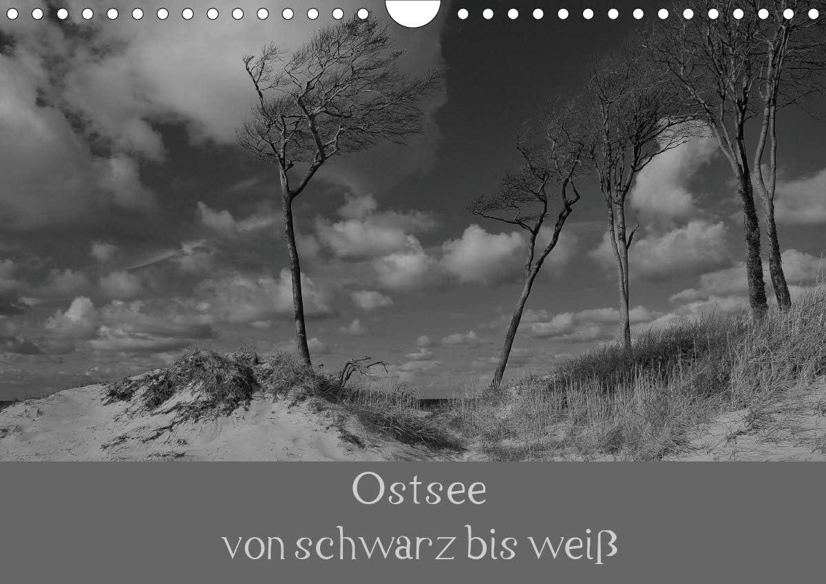 Amazon.com : Ostsee - von Schwarz bis weiß (Wandkalender ...