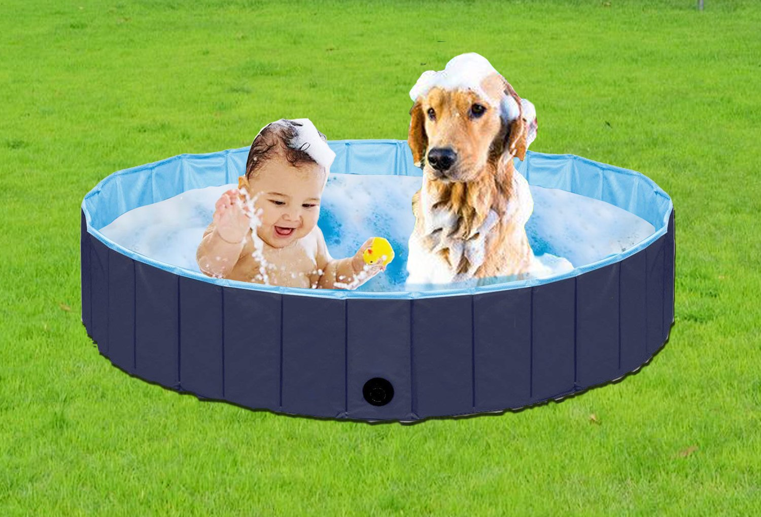 Paws of Mind Foldable & Portable Outdoor Swimming Pool, Bathing Tub, for Pets & Toddlers, by, Extra Large 63 x 12 in, Dog Cat Whelping Box