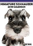 2018 THE DOG Miniature Schnauzer Desktop Calendar