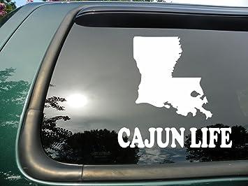 CHOOSE LIFE PRO LIFE DECAL STICKER WINDOW CAR MIRROR VINYL DIE CUT WHITE