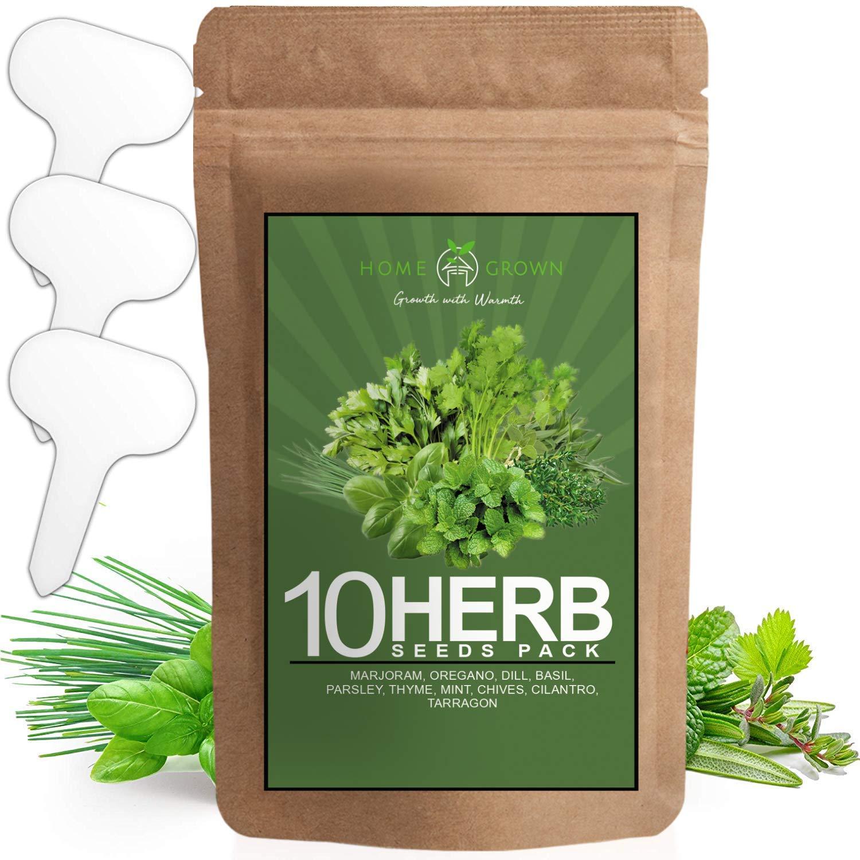 10 Culinary Herb Seed Vault - Heirloom und Non Gmo - 3000+ Seeds für Planting für Outdoor oder Indoor Herb Garden, Basil, Cilantro, Parsley, Chives, Thyme, Oregano, Dill, Marjoram, Mint, Tarragon