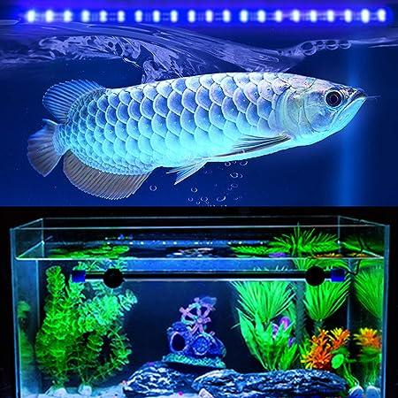 Acuario Iluminación LED Impermeable Acuario Iluminación Luz de día Simulador Azul y blanco (28/38/48/58/75/88CM): Amazon.es: Jardín