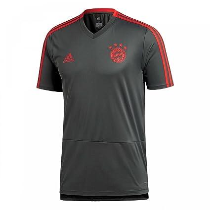 ddc74174e45 Amazon.com : adidas 2018-2019 Bayern Munich Training Football Soccer  T-Shirt Jersey (Utility Ivy) : Clothing