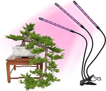 Luz de crecimiento de plantas, Luz de crecimiento de