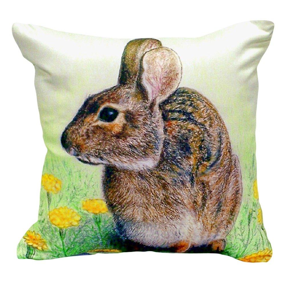 Betsy Drake NC053 Rabbit No Cord Pillow 18' x18'