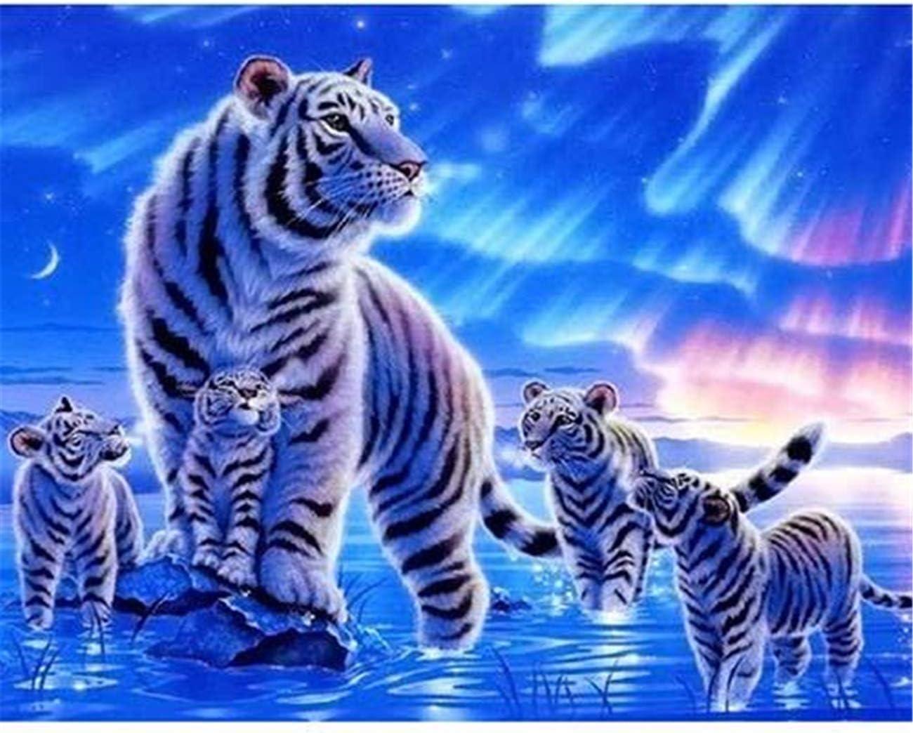 tiffan1990 Set per Pittura Ad Olio per Adulti Tela per Pittura A Olio Fai-da-Te Colorazione su Tela Fai-da-Te per Pittura Decorazione della Stanza Senza Cornice 30*40 Pittura Unica