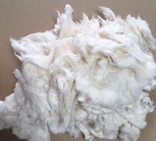 Algodón para manualidades de 100% algodón orgánico (cultivo ecológico) / GOTS, blanco, 1000 gramos, 1 kg, relleno de algodón, material de relleno para: muñecas, peluches, cojines, osos, etc.: Amazon.es: Hogar