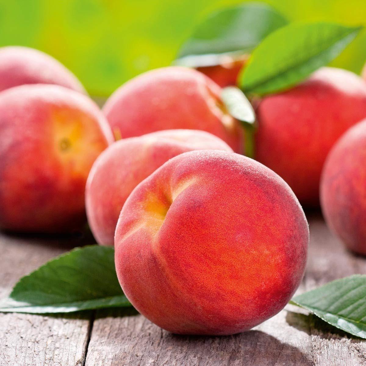 10pcs Peach Tree Seeds Sweet Delicious Fruit Bonsai Seeds Dwarf Peach Tree Amazi