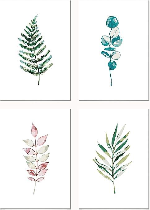 Panorama Lienzo Pack Plantas Botánicas 35x50cm - Impreso en Lienzo Bastidor - Conjunto Cuadros Pared - Cuadros Decoración Salón - Cuadros Botánica - Cuadros de Plantas: Amazon.es: Hogar