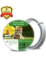 Cat Flea Amp Tick Control Amazon Com