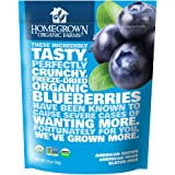 Homegrown Organic Farms Freeze Dried Blueberries 1.2 oz
