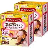 【批量购买】通过眼部湿润的蒸汽发热眼罩 熟柚 12片×2